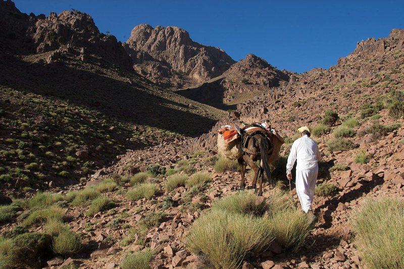Jebel Saghro