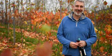 Simon Day English Nouveau wine