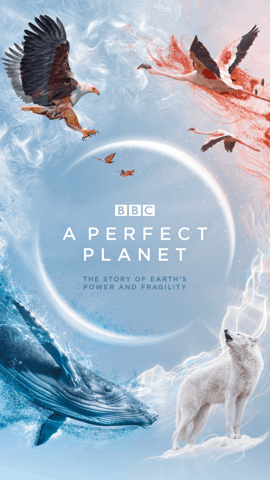 Small BBC PF A Perfect Planet Iconic Instagram Stories 1080x1920px 72dpi RGB AW - DStv: This week is about great entertainment with the ones you love